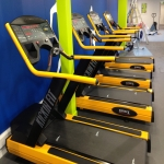 New Gym Free Weights in Ash Green 4